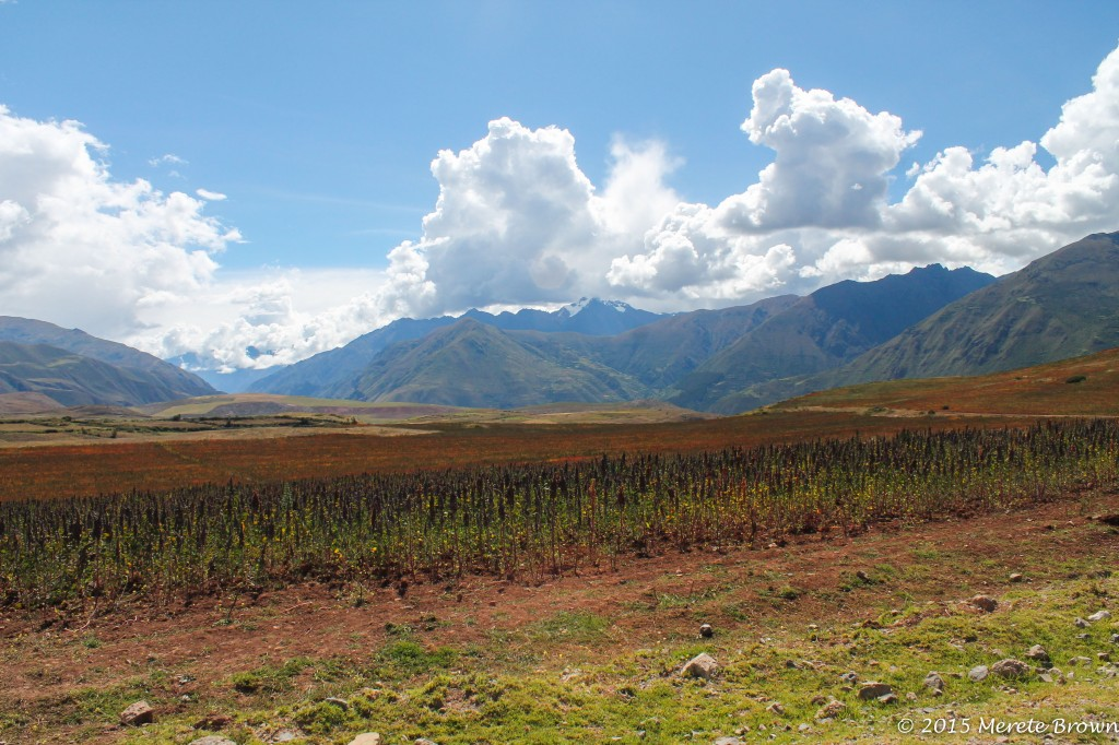 Exploring the Sacred Valley II – Salinas, Maras & Moray