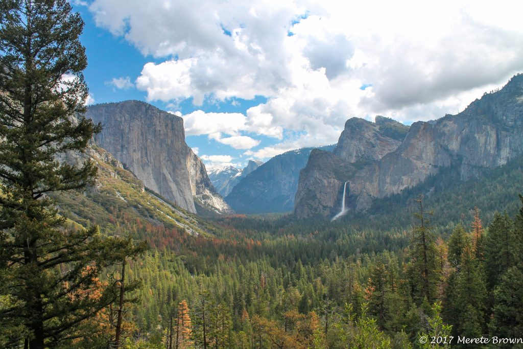 Park Beat XVI – Yosemite National Park